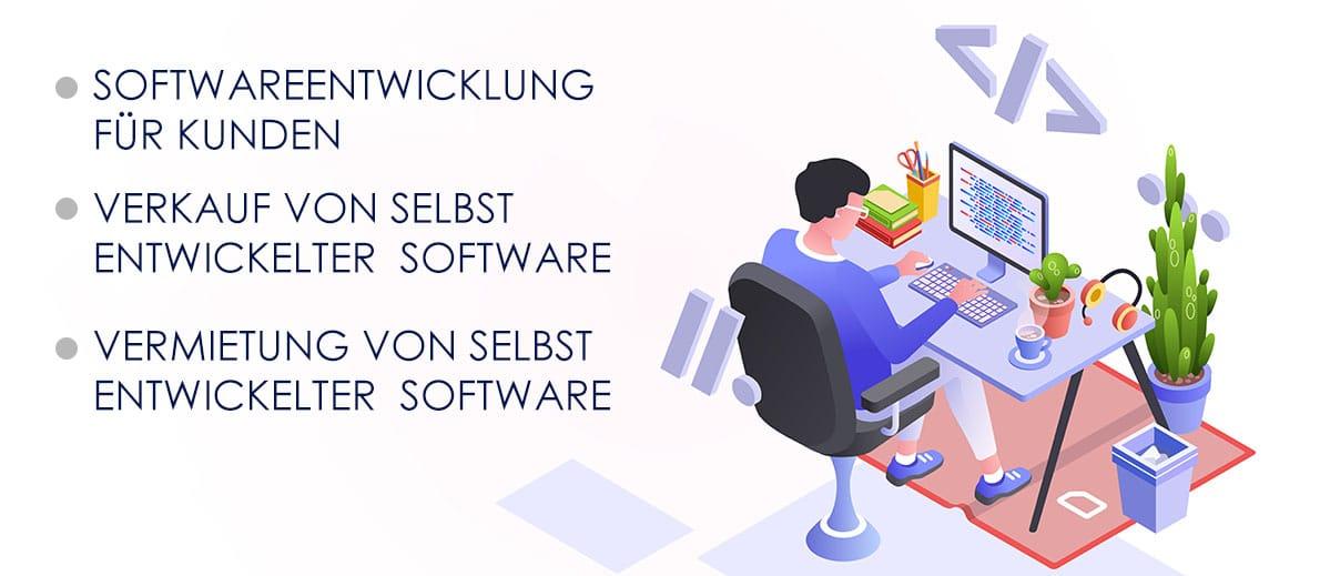 software unternehmen gründen - die optionen